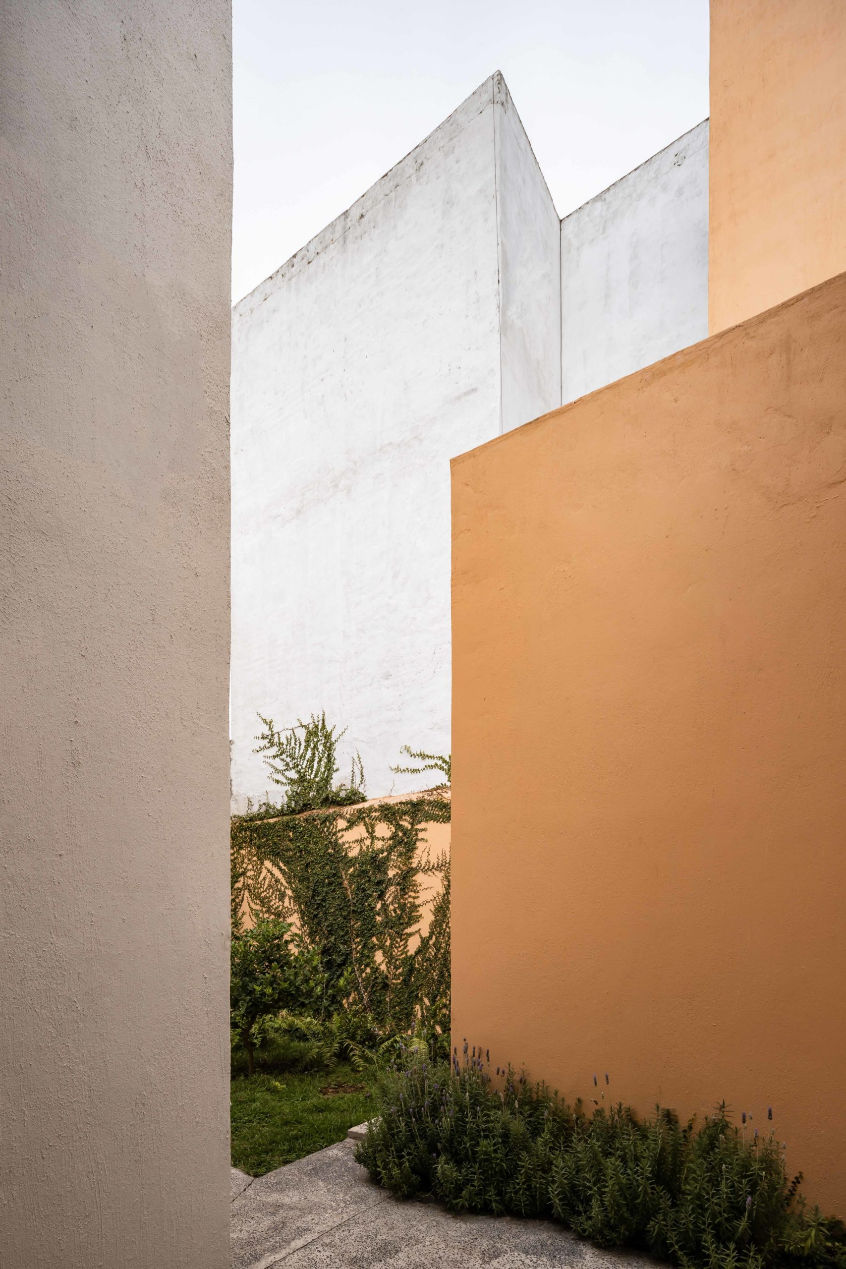 viviendas montes jardin01
