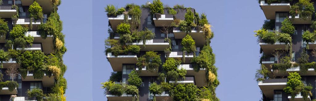 como-cuidar-del-medio-ambiente-en-casa-desarrollo-sustentable